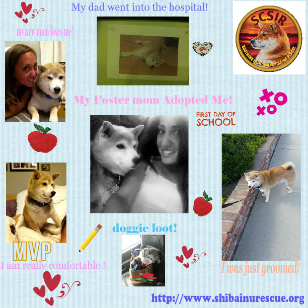 Curly T I am at home collage