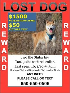 Jiro is lost if you have him or seen him please call his owner  his owner misses him and please return him thank you  this is not a scsir dog this is a courtesy post.